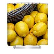 Lemons 01 Shower Curtain