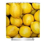 Lemons 02 Shower Curtain