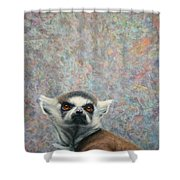 Lemur Shower Curtain by James W Johnson