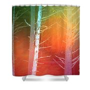 Lens Flare In The Forest Shower Curtain
