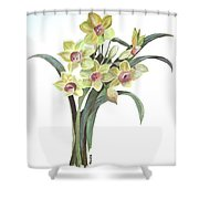 Lent Lily Shower Curtain