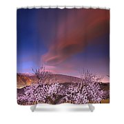 Lenticular Clouds Over Almond Trees Shower Curtain