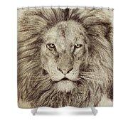 Leo Shower Curtain by Eric Fan