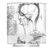 Leonardo: Brain, C1490 Shower Curtain
