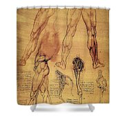Leonardo: Legs, C1508 Shower Curtain