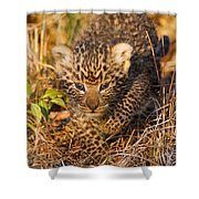 Leopard Cub Shower Curtain