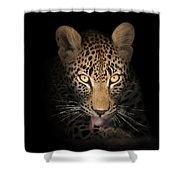 Leopard In The Dark Shower Curtain by Johan Swanepoel
