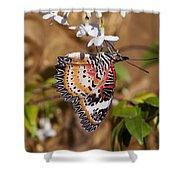 Leopard Lacewing Butterfly Dthu619 Shower Curtain by Gerry Gantt