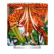Leopard Lily 2 Shower Curtain