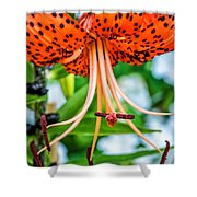 Leopard Lily Shower Curtain