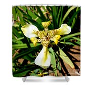 Leopard Orchid Shower Curtain