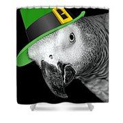Leprechaun Parrot Shower Curtain
