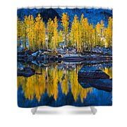 Leprechaun Tamaracks Shower Curtain