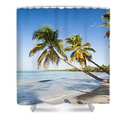 Les Salines Beach Shower Curtain