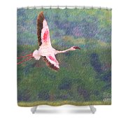 Lesser Flamingo Phoenicopterus Minor Flying Shower Curtain