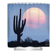 Let Beauty Awake Shower Curtain