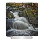 Let It Flow Shower Curtain by Evelina Kremsdorf
