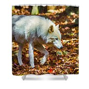 Let The Timber Wolf Live Shower Curtain by John Haldane