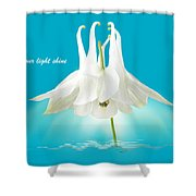 Let Your Light Shine Shower Curtain by Gill Billington