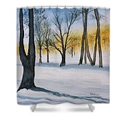 Letchworth State Park Ny Shower Curtain