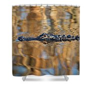 Lethal Glide Shower Curtain