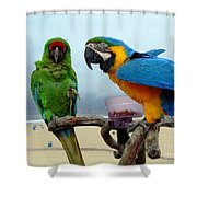 Lets Do Lunch Shower Curtain