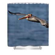 Let's Fly Shower Curtain