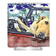 Let's Go Shopping Shower Curtain