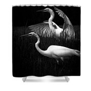 Let's Just Wing It Shower Curtain