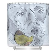 Let's Play Ball Shower Curtain