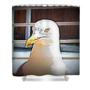 Lets Take Off Together, To Your Place Or Mine   Shower Curtain
