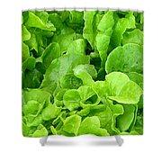 Lettuce Sing Shower Curtain