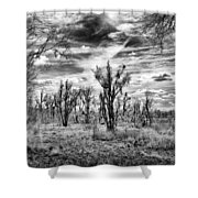 Levy Lake Shower Curtain