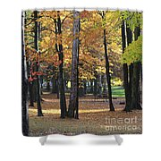 Lexington Park Shower Curtain