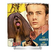 Lhasa Apso Art - East Of Eden Movie Poster Shower Curtain