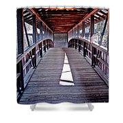 Liberty Bridge Swan Lake Shower Curtain