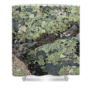 Lichen And Granite Img 6187 Shower Curtain