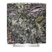 Lichen And Moss Shower Curtain