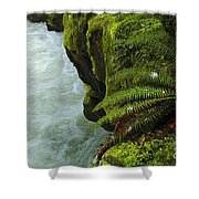 Lichen Covered Rocks With Stream In Oregon Shower Curtain
