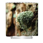 Lichen Mimic Shower Curtain