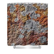 Lichen On Sandstone Shower Curtain