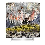 Lichen On Sea Beach Rock Shower Curtain