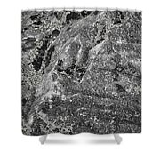 Lichen On The Whistlers - Black And White Shower Curtain