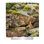 Lichens And Moss In Glen Strathfarrar Shower Curtain