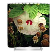 Life And Death In The Garden Shower Curtain