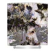 Life And Death On The River Of Rocks Trail Shower Curtain