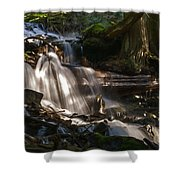 Life Begins To Flow Shower Curtain
