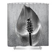 Life In Black And White Shower Curtain