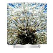 Life In Details Shower Curtain