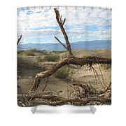 Life In The Desert Shower Curtain